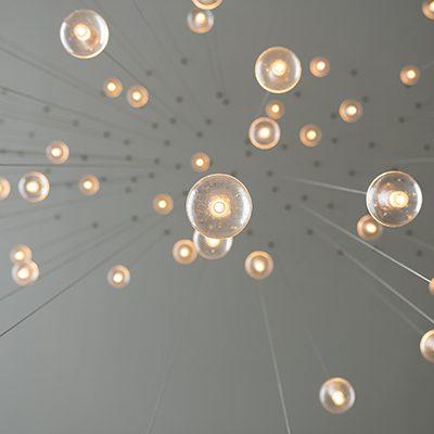 Hall of Fame Bulbs